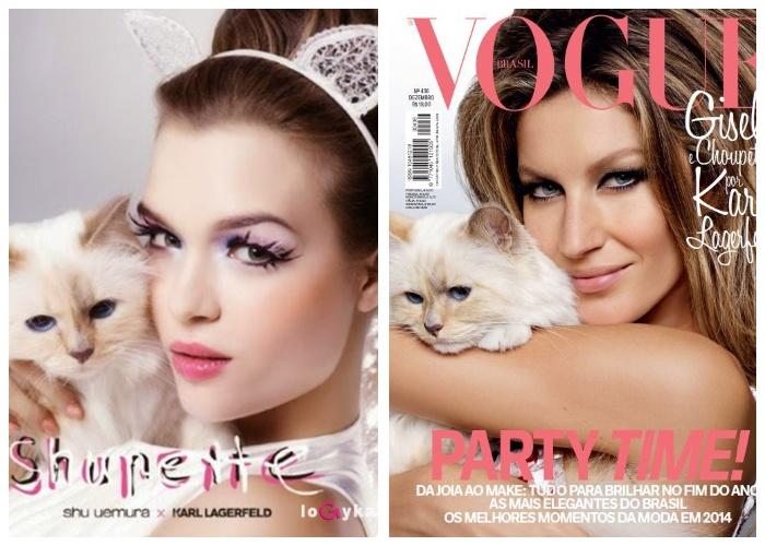 Кошка Шупетт снимается для глянцевых журналов со знаменитыми моделями и имеет свою страничку в Instagram.