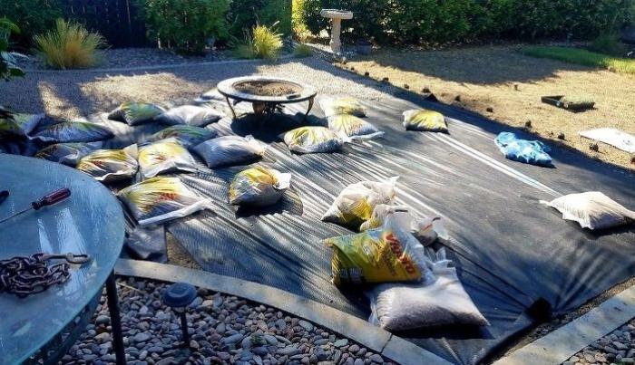 Во избежание прорастания сорняков, на землю нужно постелить черную пленку (So Cal, Калифорния). | Фото: lemurov.net/ © Tiffany.