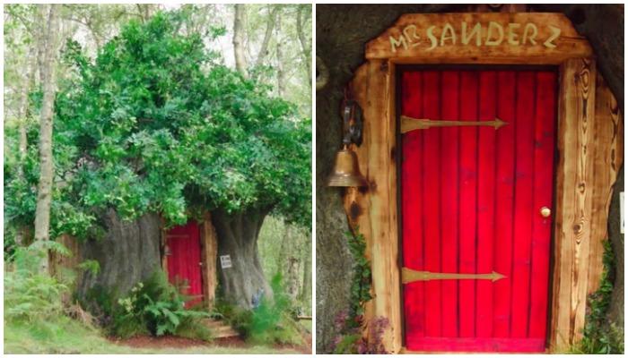 В Эшдаунском лесу появилась точная копия домика Винни-Пуха, который можно снять на выходные (Хай-Вельд, Великобритания).