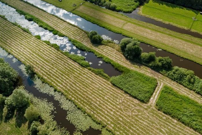 Узкие полоски островков используются в качестве сельхозугодий (Vinkeveense Plassen, Нидерланды).   Фото: makelaardij-witte.nl.