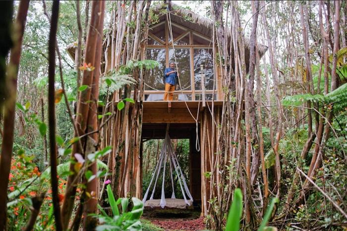 Домик в тропическом лесу (Гавайи).
