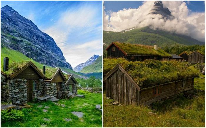 Жители скандинавских стран трепетно относятся к своей истории и зеленые крыши не стали исключением.