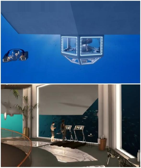 Подводная смотровая капсула порадует любителей понаблюдать за жизнью морских обитателей (концепт Blue Estate).