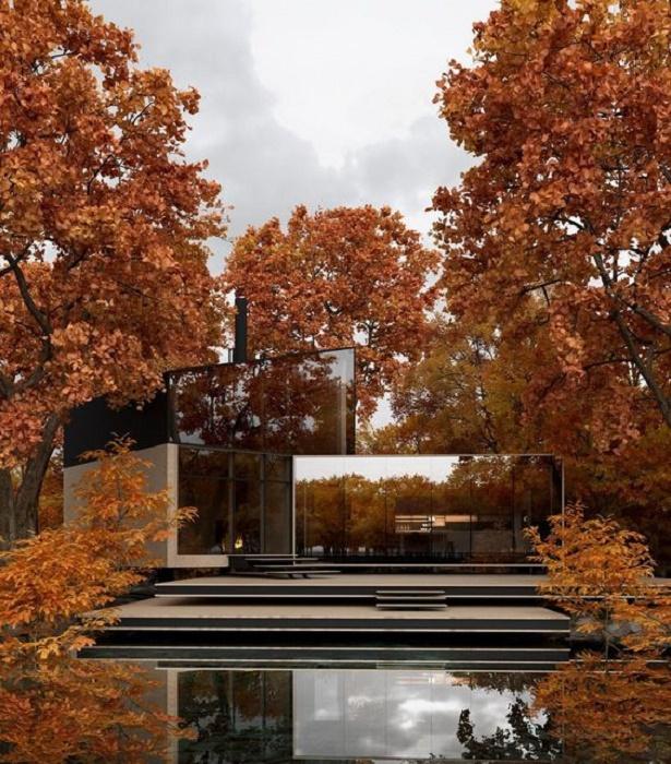 Бассейн усиливает зеркальный эффект, отражая дом и окрестности (проект YUKON house). | Фото: nl.pinterest.com.