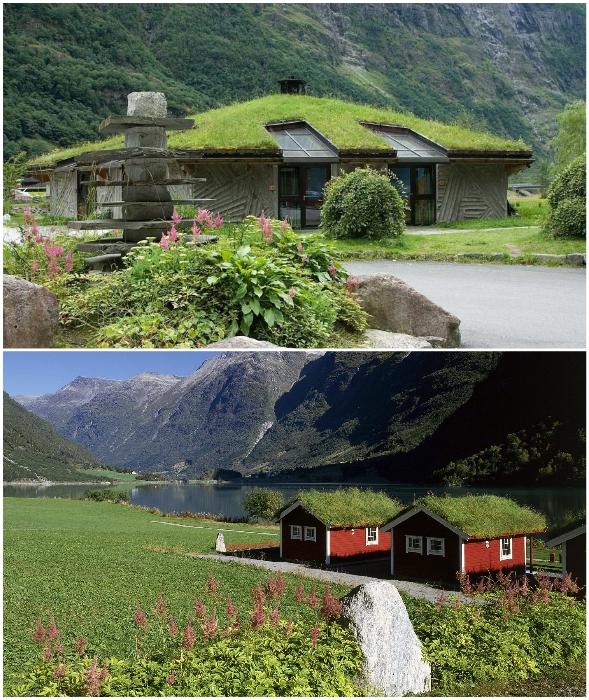 Народы Скандинавии до сих пор строят дома с травяными крышами.