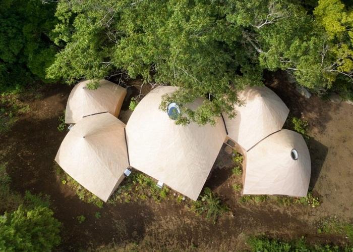 Необычный жилой дом с лесной чаще (Jikka, остров Хонсю).