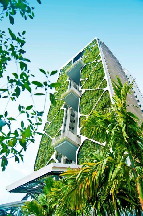 429 семей живут в прекрасном оазисе среди тысяч цветов, кустарников и деревьев («Tree House», Сингапур). | Фото: uno-propiedades.com.ar.