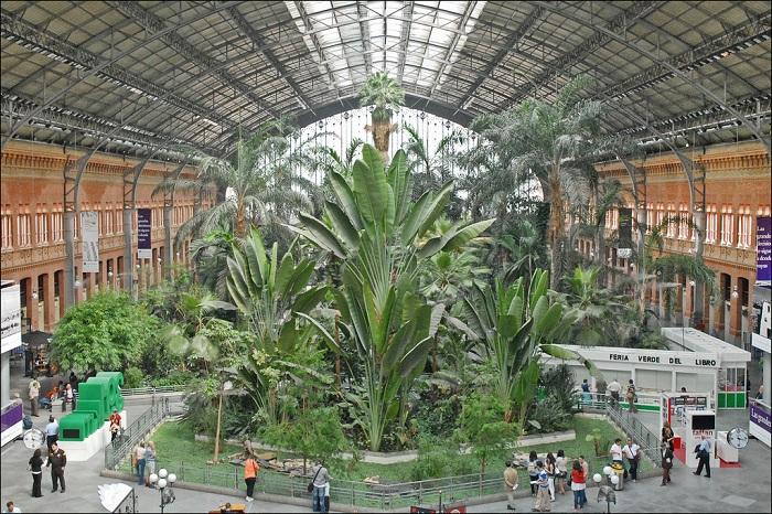 На месте старого терминала расположился огромный ботанический сад (Мадрид).