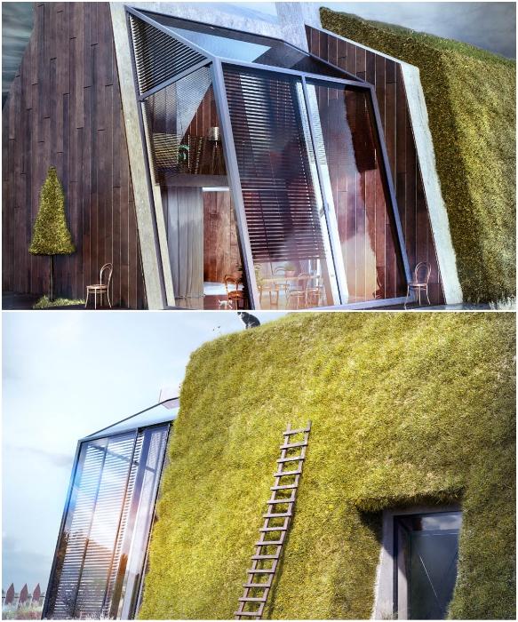 Часть дома покрыта травой, что позволяет создать не только оригинальный экстерьер, но и энергоэффективное жилье (концепт Karina Wiciak).   Фото: instagram.com/ wamhouse.