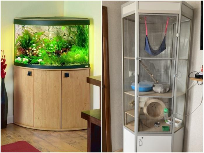 В квартире можно устроить «живой» уголок для домашних питомцев. | Фото: roomester.ru/ avito.ru.