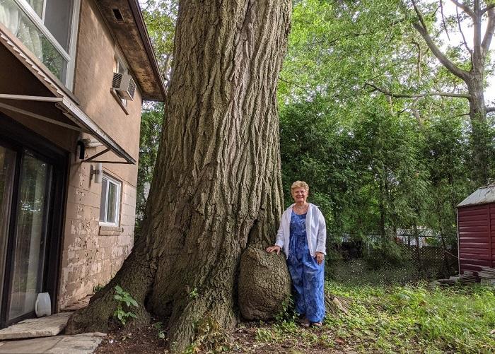 Эдит Джордж – местная жительница, которая 14 лет добивалась решения сохранить дуб и оставить ему шанс на жизнь. | Фото: twitter.com/ © AFPphoto.