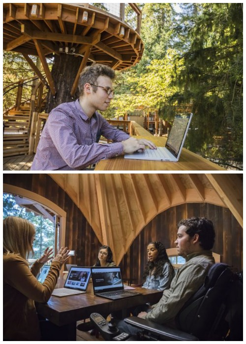 Идеальное место для проведения мозговых штурмов и уединенной работы на лоне природы (Редмонд, США).