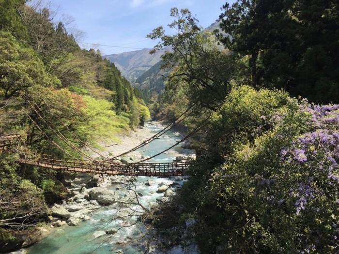 Подвесной мост в долине Ия, расположенной на острове Сикоку в префектуре Токусима (Япония). | Фото: blog-magazin.ru.