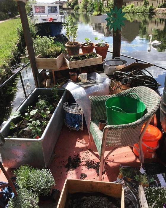 Кимберли организовала собственный огород на палубе судна.
