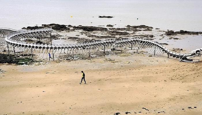 «Морской змей» от китайского художника Хуан Ен Пина на пляже в Сен-бревен-Ле-Пен (Франция). | Фото: dailymail.co.uk.