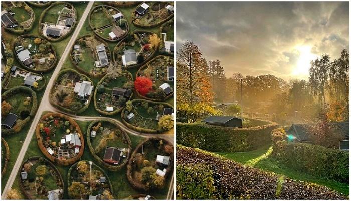 В пригороде Копенгагена есть дворы овальной формы и нет подъездных дорог к каждому дому (Naerum, Дания).