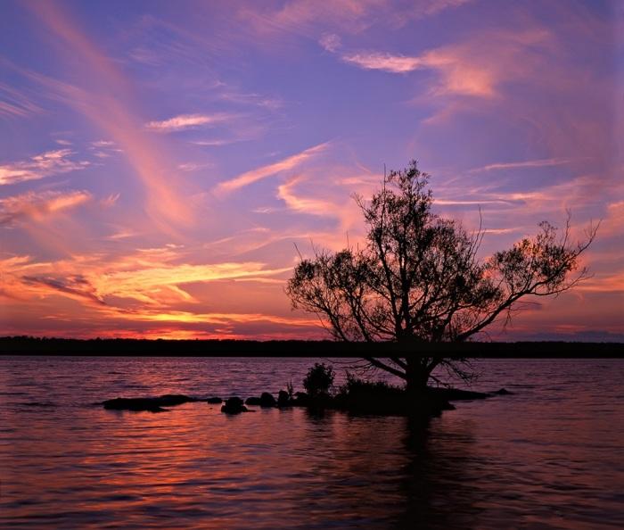Клок суши с одним деревом является полуостровом. | Фото: en.wikipedia.org.