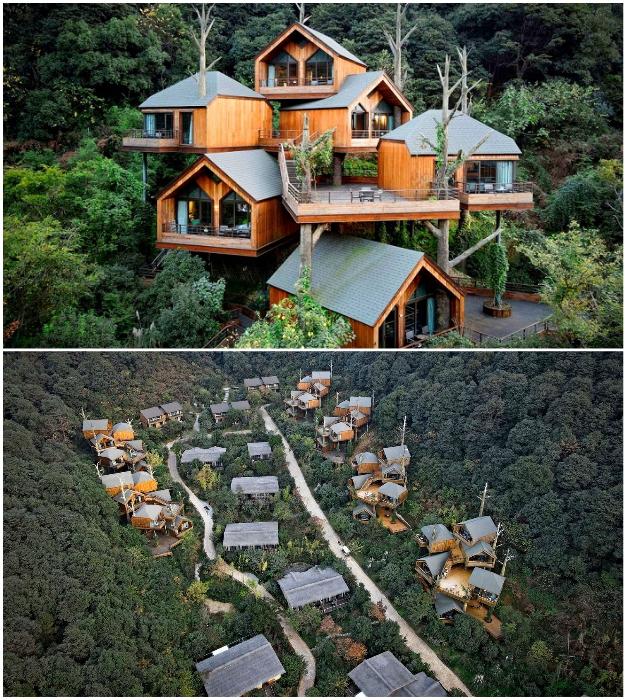 Китайские архитекторы спроектировали причудливый курорт на деревьях, чтобы исполнить детские мечты постояльцев (Kaiyuan Senbo, Ханчжоу).