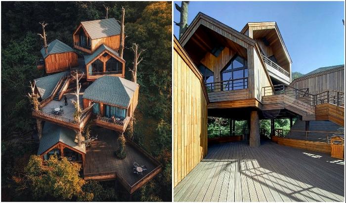Вертикальное закрепление отдельных модулей с террасами, переходами и лестницами позволили создать своеобразные корпуса с 5-6 номерами (Tree House, Ханчжоу).