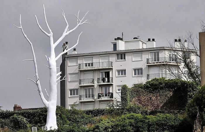 Свое видение лунного дерева представили художники Петр Мржик и Жан-Франсуа Морисо (The Lunar Tree, Франция). | Фото: dailymail.co.uk.