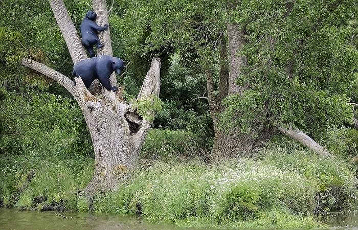 Американская художница Sarah Sze установила скульптуры двух черных медведей на берегу Луары недалеко от города Бугене («Поселенцы», Франция). | Фото: dailymail.co.uk.