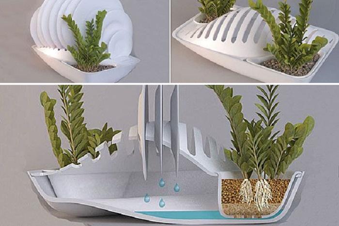 Отличная идея, чтобы максимально использовать воду и дополнительно украсить кухню. | Фото: nation.com.mx.