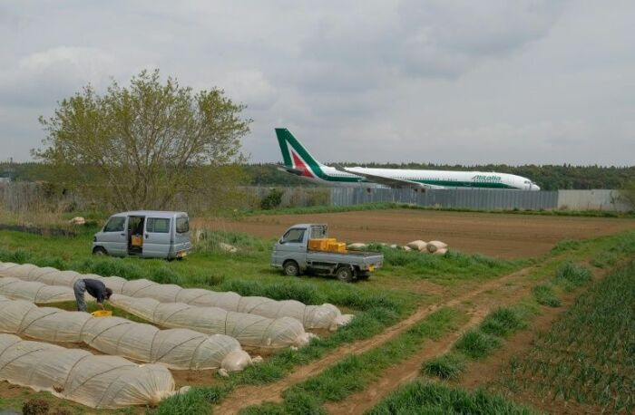 Работа по уходу за урожаем сопровождается непрерывным гулом самолетов. | Фото: thisismoney.co.uk.