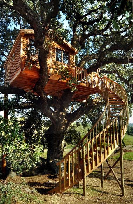 Отельный номер Suite Blue на дереве построен по особой технологии компанией La Cabane Perchee. | Фото: hqroom.ru.