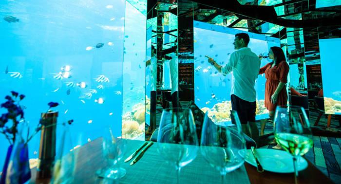 Подводная дегустация вин оставит неизгладимые впечатления (Sea Underwater Restaurant, Мальдивы). | Фото: anantara.com.