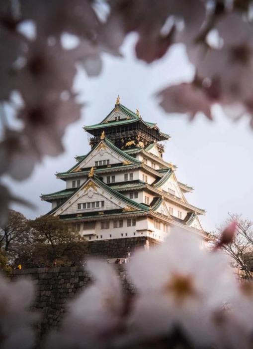 Замок был построен в 1585-1598 гг. полководцем Тоетоми Хидэеси (Осака, Япония). | Фото: vinegred.ru/ Lee Mumford.