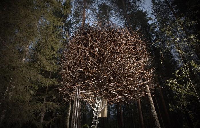 Bird's Nest – один из номеров уникального гостиничного комплекса Treehotel (Швеция). | Фото: realt.by.