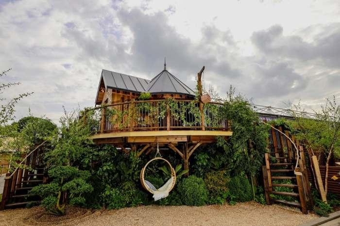 Две винтовые лестницы ведут в домик на дереве. | Фото: newatlas.com.