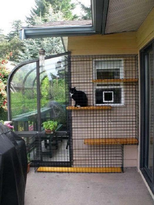 Если нет возможности отдать кошке всю площадь балкона или лоджии, организуйте небольшой вольер в одной части. | Фото: pinterest.com.