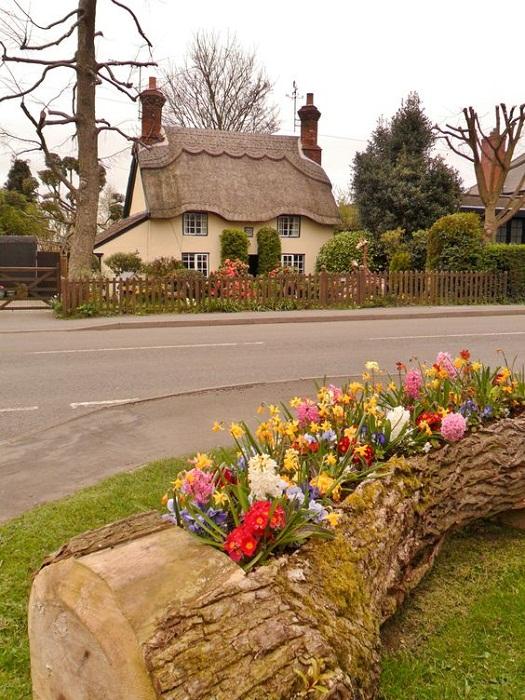 Улицы поселков всего графства Девоншир украшены необыкновенными клумбами.