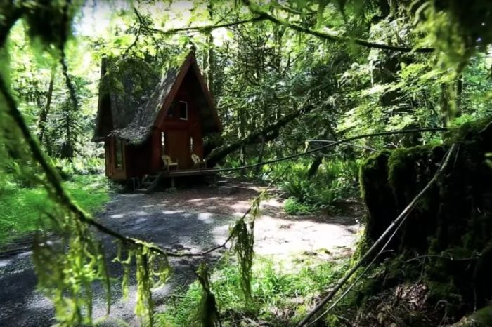 Лесной мини-терем гармонично вписался в окружающую природу.   Фото: tips-and-tricks.co.