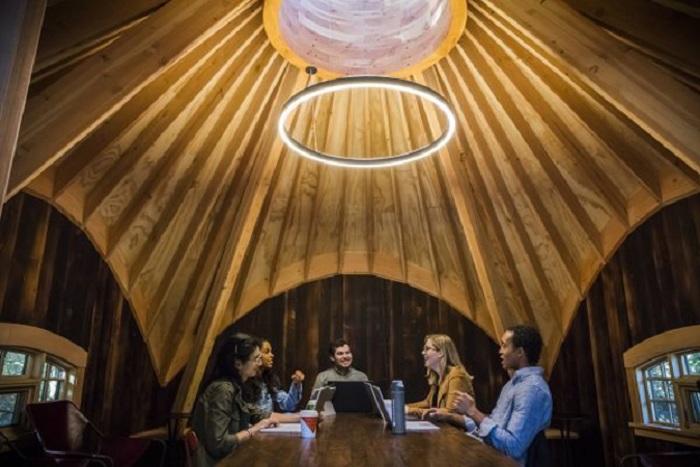Один из конференц-залов, созданных на деревьях компанией Microsoft (Редмонд, США). | Фото: buro247.ua.