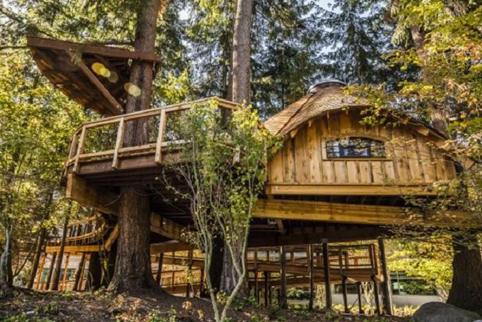 В заповедном парке компания Microsoft создала три конференц-зала на деревьях (Редмонд, США). | Фото: buro247.ua.