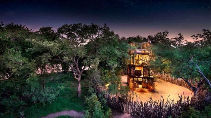 В заповеднике ЮАР можно провести незабываемую ночь под звездами, в окружении ...львов, тигров и носорогов. | Фото: mymodernmet.com.