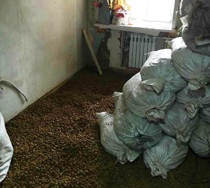 Для того, чтобы сократить срок высыхания цементной стяжки, решили использовать керамзит. | Фото: industriyaremonta.ru.