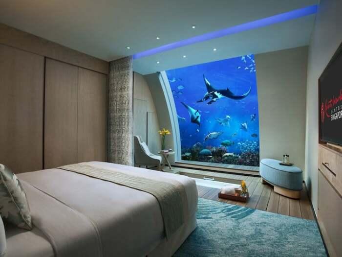 В спальне можно часами наблюдать за подводными обитателями (Resorts World Sentosa, Сингапур). | Фото: mymodernmet.com.