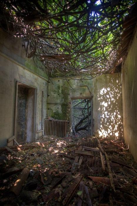 Развалины старой крепости.