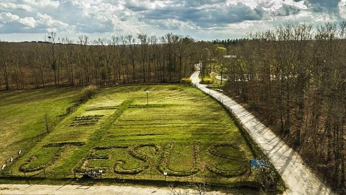 На огороде красуется имя Иисуса, созданная из высаженных растений. | Фото: budport.com.ua.