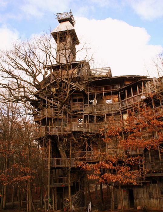 На строительство «небоскреба» на дереве Гораций потратил 20 лет упорного труда. | Фото: nastroy.net.