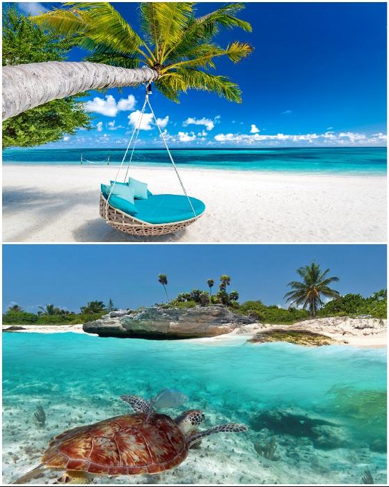 Срочно требуется человек, желающий пожить неделю на острове.