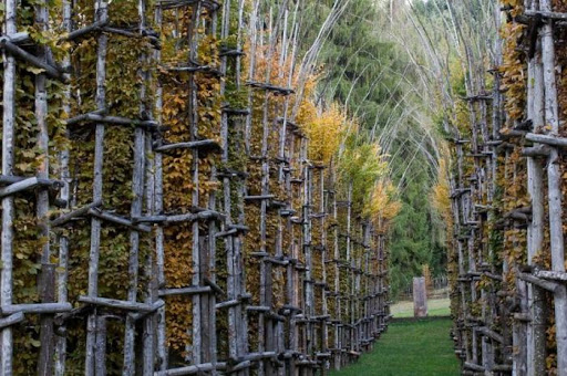 В любое время года храм будет иметь особенный наряд («Cattedrale Vegetale», Италия).   Фото: batona.net.