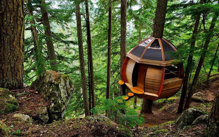 Секретный домик на дереве создал обычный программист (HemLoft, Канада). | Фото: 2D.by.
