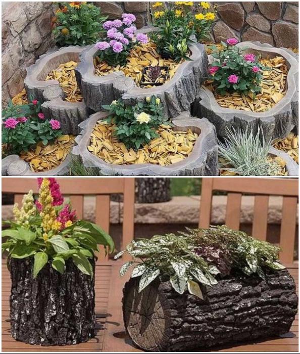 Пни и бревна тоже помогут пристроить цветы и украсить участок.