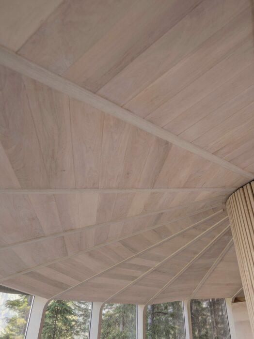 Внутреннее пространство номера организовано вокруг ствола сосны, спрятанного за деревянным коробом (Woodnest, Одда). | Фото: mossandfog.com.