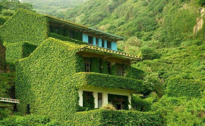 Всего лишь за три десятилетия школа, больница и жилые дома превратились в зеленый оазис (Хоутоу Ван, Китай). | Фото: mydiscoveries.ru/ © Jane Qing.