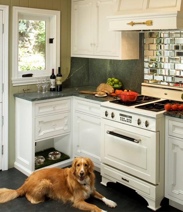 Владельцы квартир-студий должны взвесит все за и против, перед тем как заводить животное. | Фото: archset-studio.com.